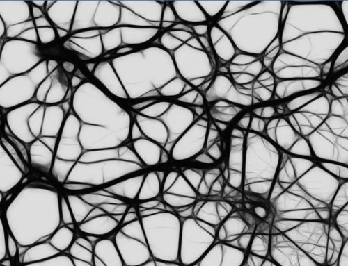 La conceptualización de lo mental en el paradigma DSM. Artículo de Fermín Goñi